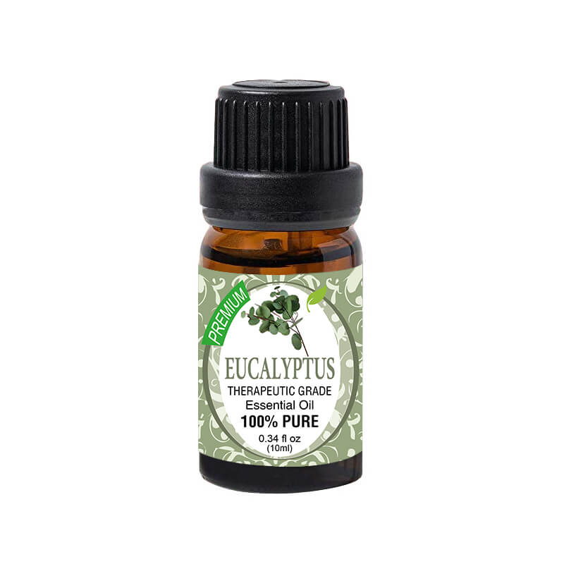 eucalyptus-essential-oils-e101