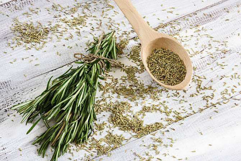 Rosemary-Essential-Oil-For-Back-Pain