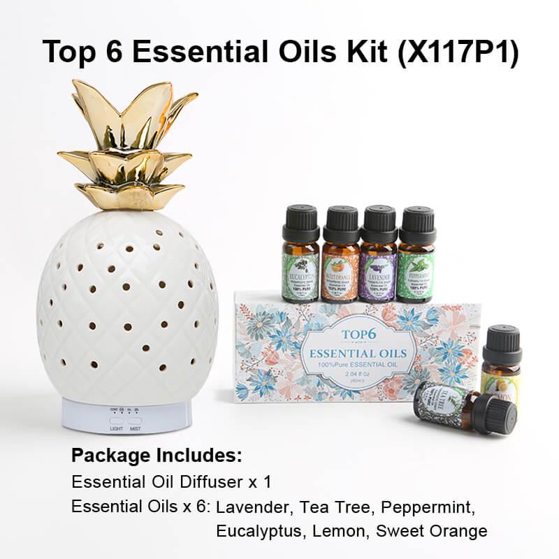 X117P1 Diffuser Essential oil kits