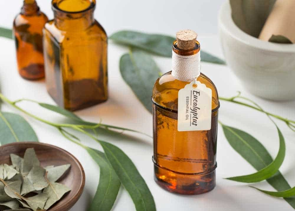 Eucalyptus-essential-oil-for blister