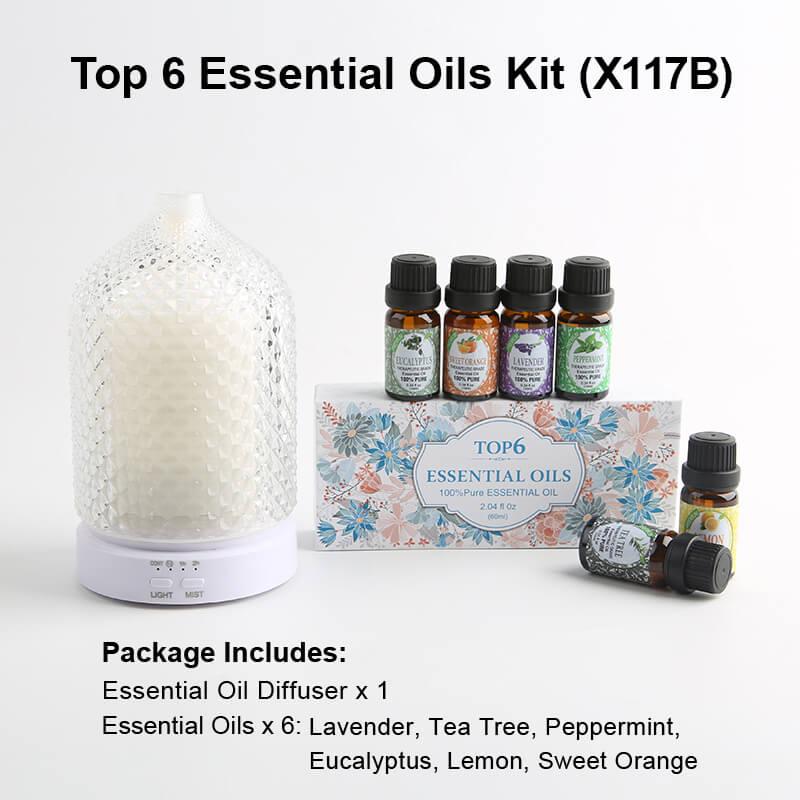 X117B Diffuser Essential oil kits