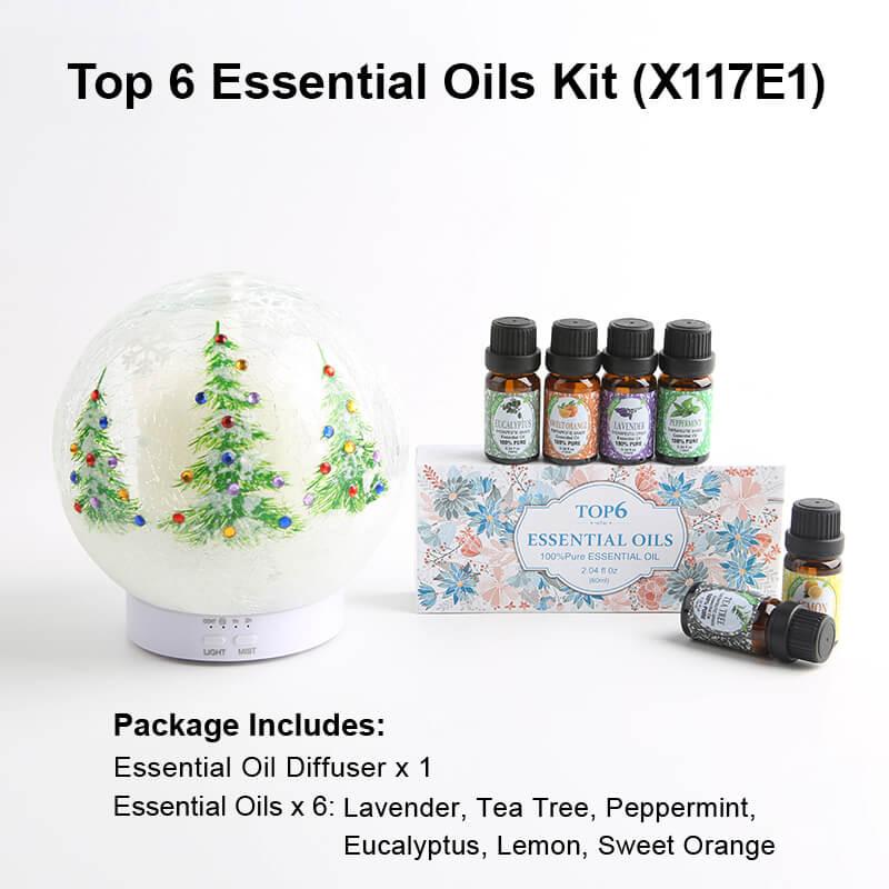 X117E1 Diffuser Essential oil kits