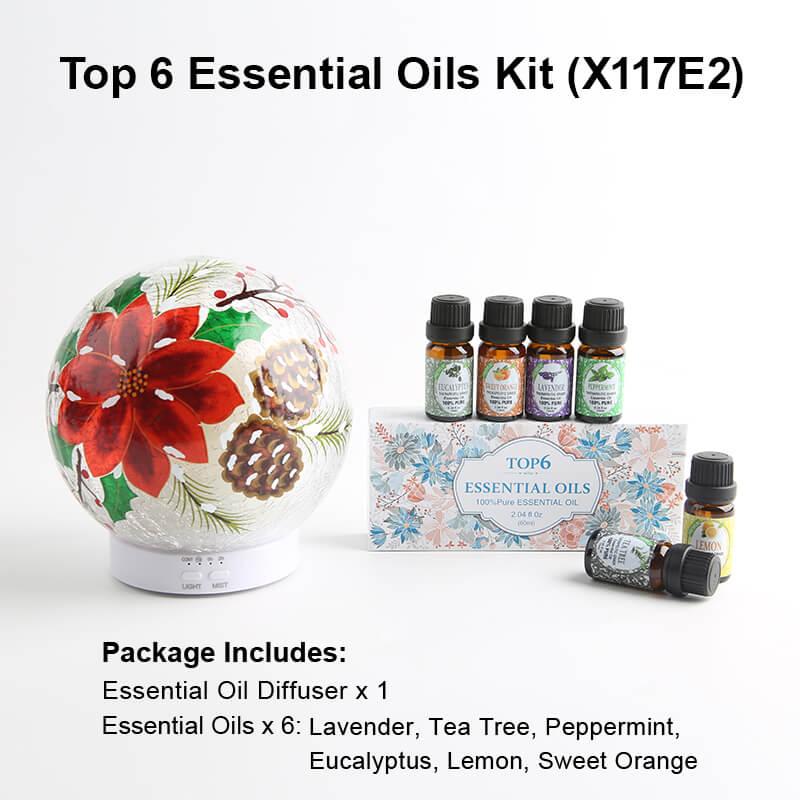 X117E2 Diffuser Essential oil kits
