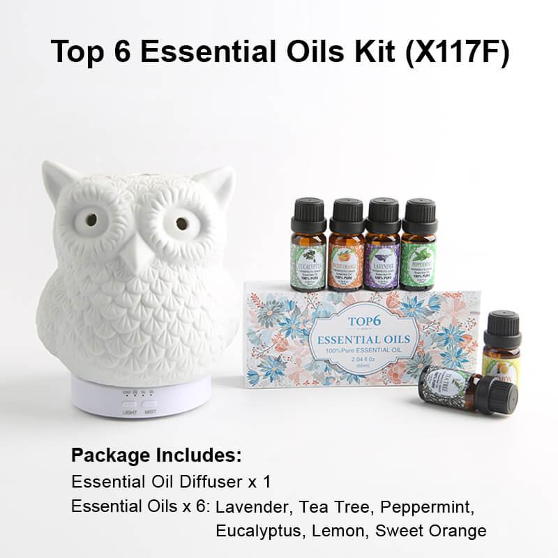 X117F Diffuser Essential oil kits